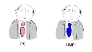 PS_UMP