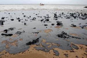 article_pollution_estuaire